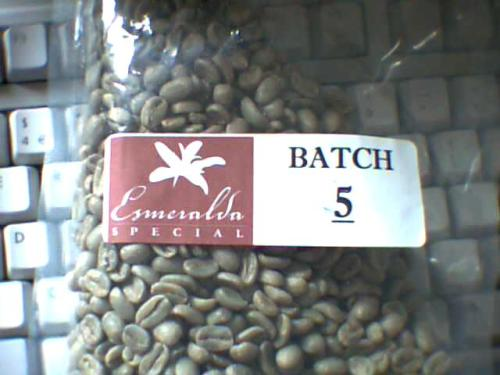 Panama Hacienda Esmeralda Special Batch 5 sample